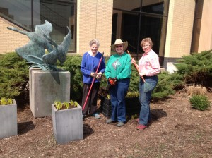 Donna Koledo, Joyce Latreille and KGC President Anne Todd at the Grand Rapids Museum doing spring clean-up and planting Muscari armeniacum commonly known as grape hyacinths in the planters. These bulbs will produce a beautiful purple flower in early spring, that will last until mid May. The flowers have a rich fruity fragrance. They go dormant in the summer, and are good for naturalizing. They spread slowly and need no care.
