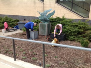 Donna Koledo and Anne Todd planting grape hyacinths in planters at Grand Rapids Museum.